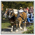 Landis Valley Harvest Days